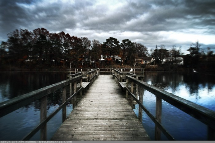 Suburban Pond