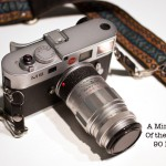 Vintage glass is fun! A mini review of the Leica 90 Elmarit by Amy Medina