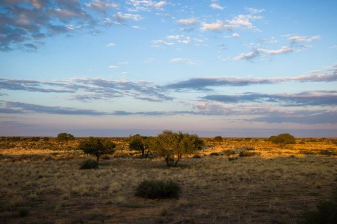 1 Kalahari desert M9 Summilux 35