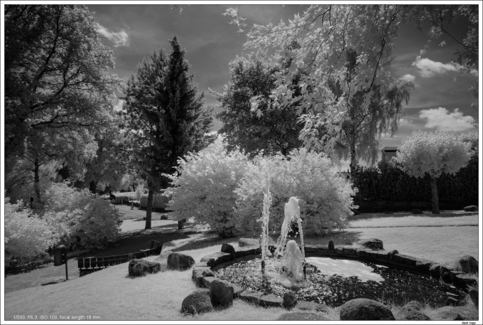NEX7-IR infrared with E 10-18mm OSS