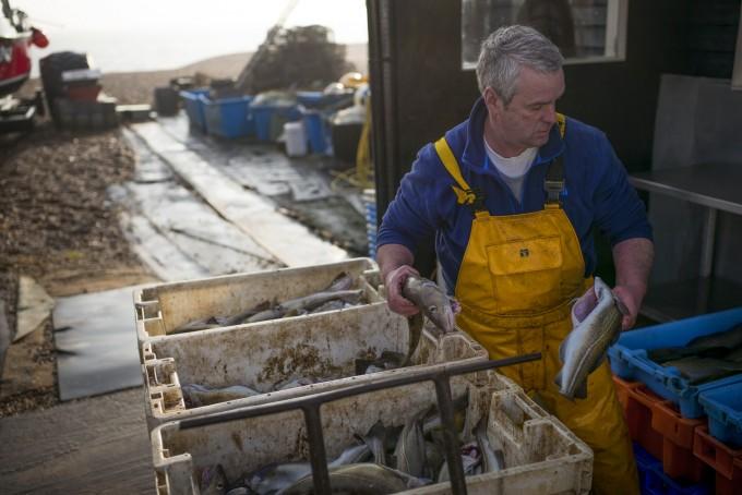 Shot 7 Fisherman Sorting Catch