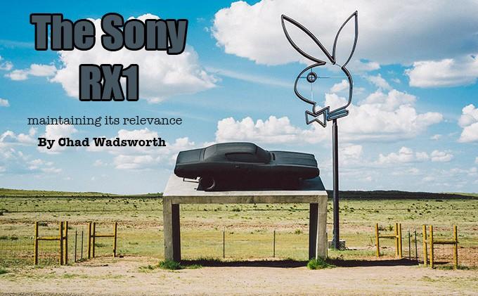 rx1-marfa-bunny-1