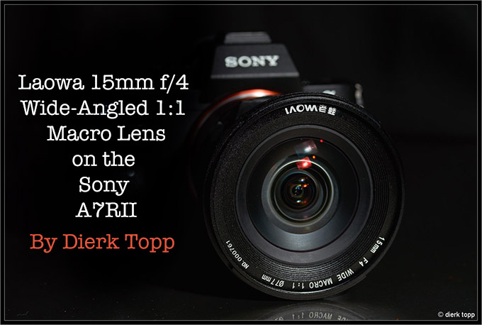 Laowa 15mm f/4 Wide-Angled 1:1 Macro Lens on the Sony A7RII by Dierk Topp