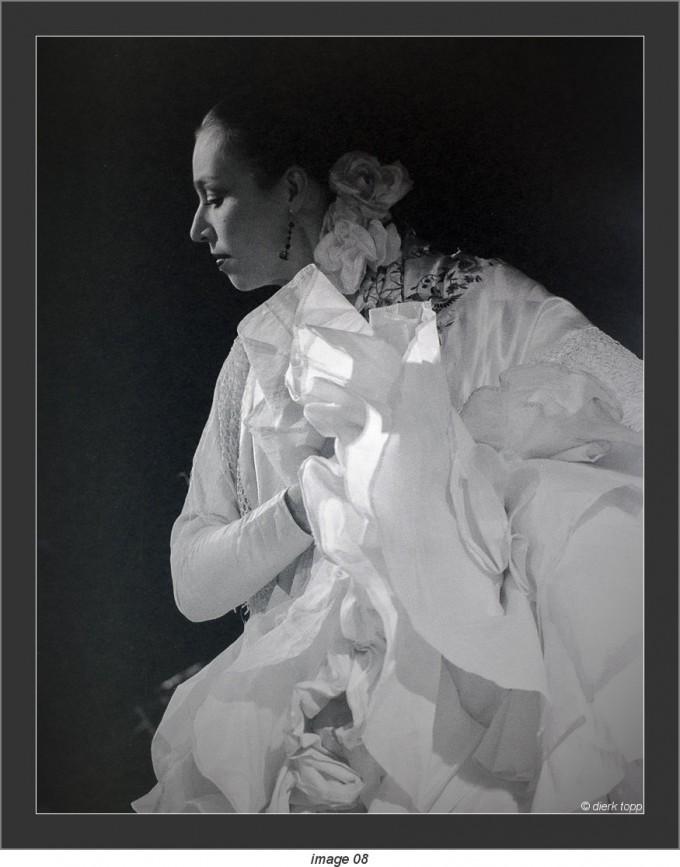 flamenco Nin Corti