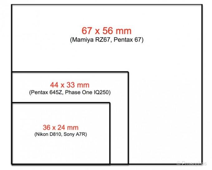 2. Prosophos Mamiya RZ67 (sensor size)