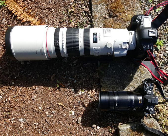 the mighty panasonic leica 100 400mm lens review by bob towery steve huff photo. Black Bedroom Furniture Sets. Home Design Ideas