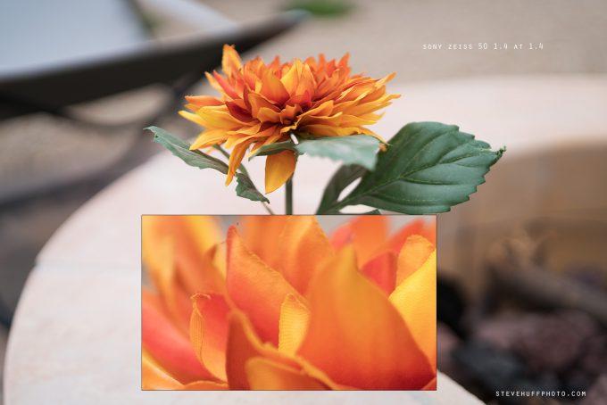 flowernew