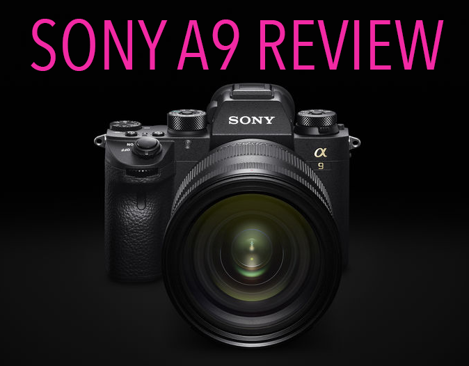 The Sony A9 Camera Review. So much more than an action camera. By Steve Huff