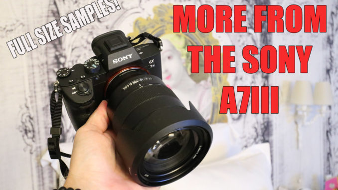 Sony A7III: Full Size Samples, and differences between the